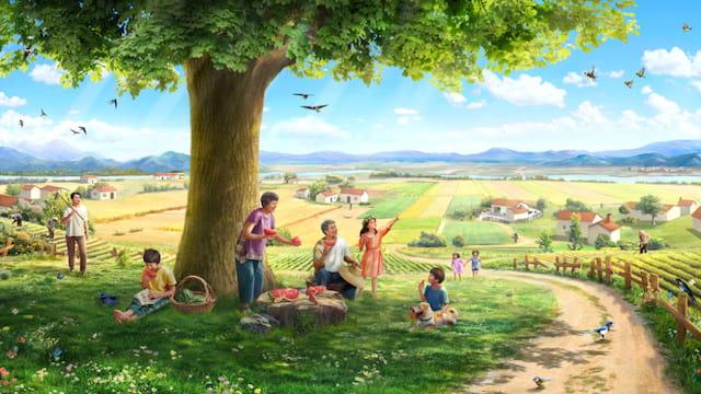 Historia. Una semilla, la tierra, un árbol, la luz del sol, los pájaros cantores, y el hombre