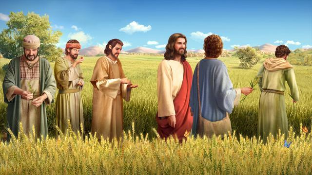 ¿Por qué el Señor Jesús trabajaba en el día de reposo?