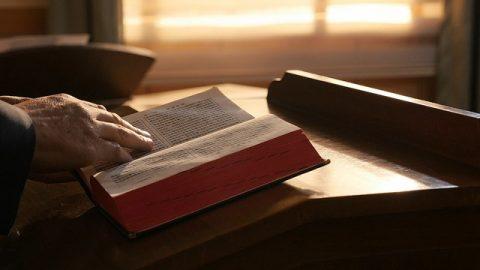 ¿Quién escribió la Biblia y qué tan bien la conoces?