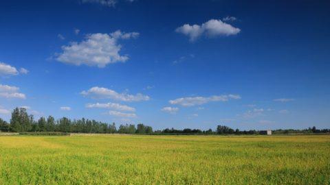 Resultado de imagen de Cielo Por qué el cielo es azul?