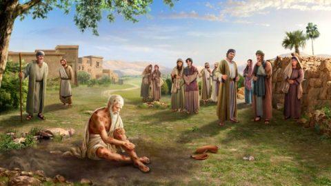 Job (personaje bíblico)