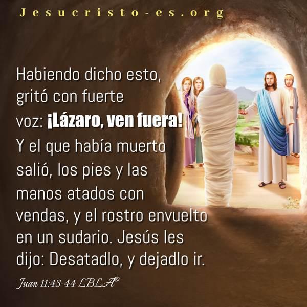 El Señor Jesús pudo hacer que resucitara Lázaro de muertos
