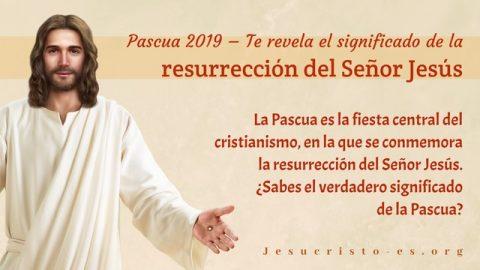 Reflexión sobre la Pascua: El significado de la aparición del Señor después de Su resurrección