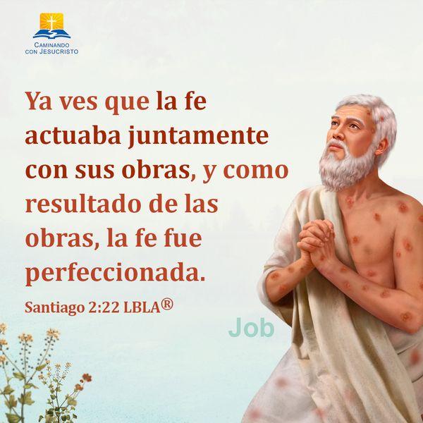 Versículos De La Biblia Santiago 222