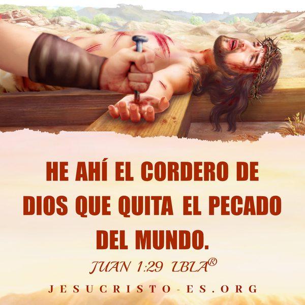 Versículos de la Biblia – Juan 1:29