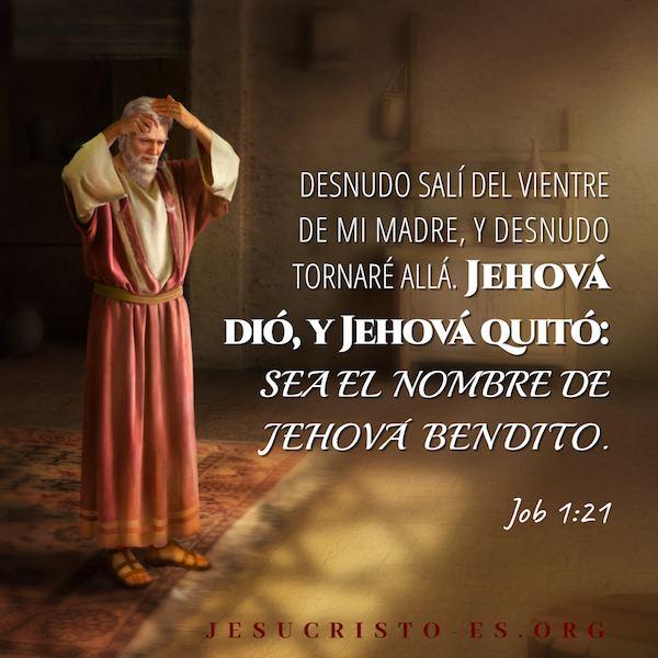 Versículos de la Biblia – Job 1:21