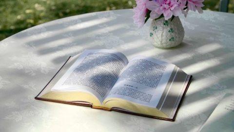 El misterio de la encarnación (4)