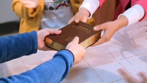 Testimonio de una católica: después de 20 años, seguí los pasos de Dios (Parte 2)