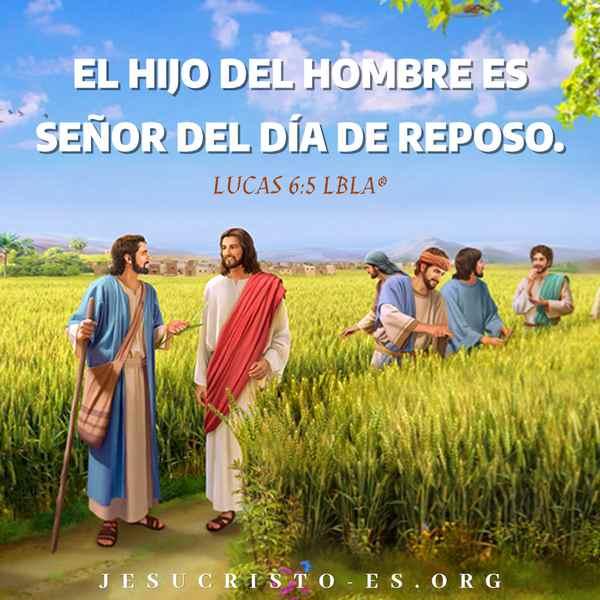 Versículos de la Biblia - Lucas 6:5