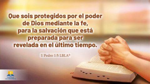 Versículos bíblicos sobre la salvación