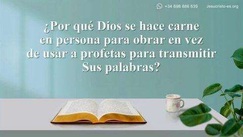 Libro Abierto De La Sagrada Biblia