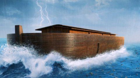 Han surgido los días de Noé: ¿Qué presagia esto?