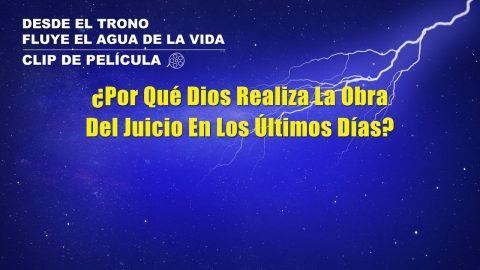 """""""Desde el trono fluye el agua de la vida"""" Escena 4 - ¿Por qué Dios realiza la obra del juicio en los últimos días?"""